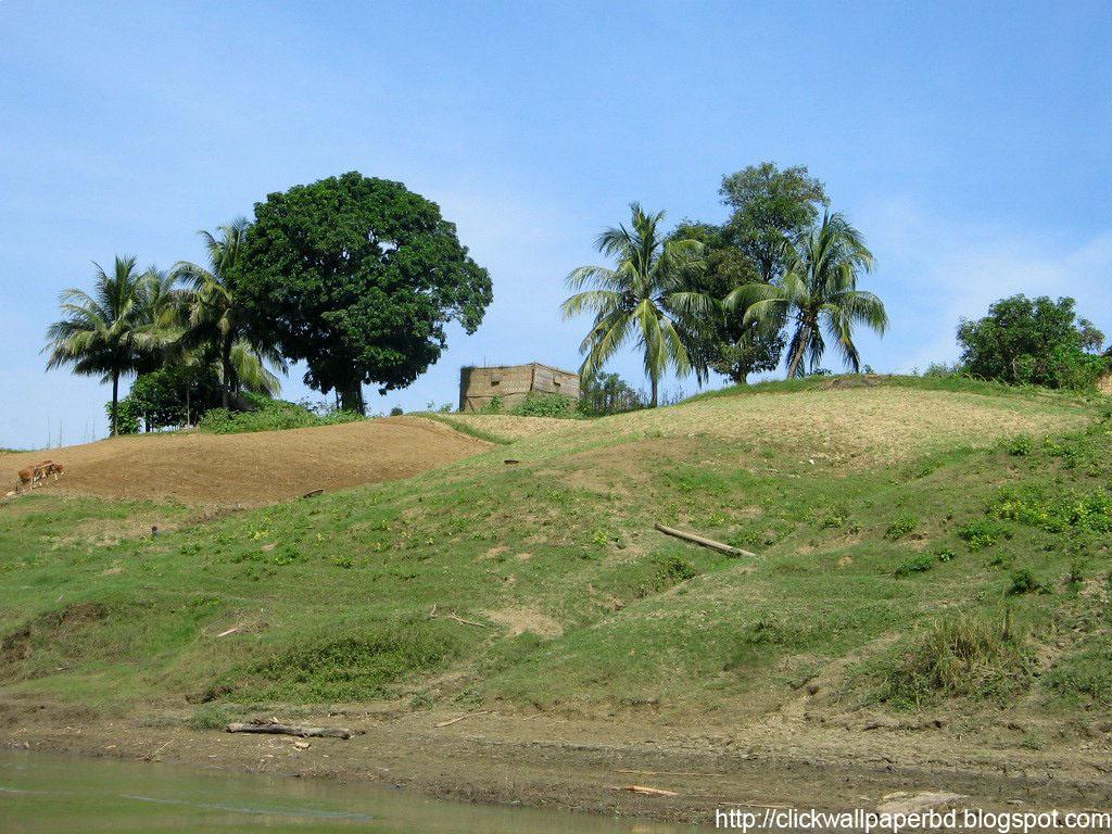 Https Banner 2012 01 28t181221z Patung Buddha Happy Natural Sandstone Brazil 7945 Khagrachori1
