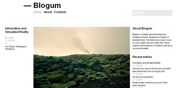 Blogum WP Theme