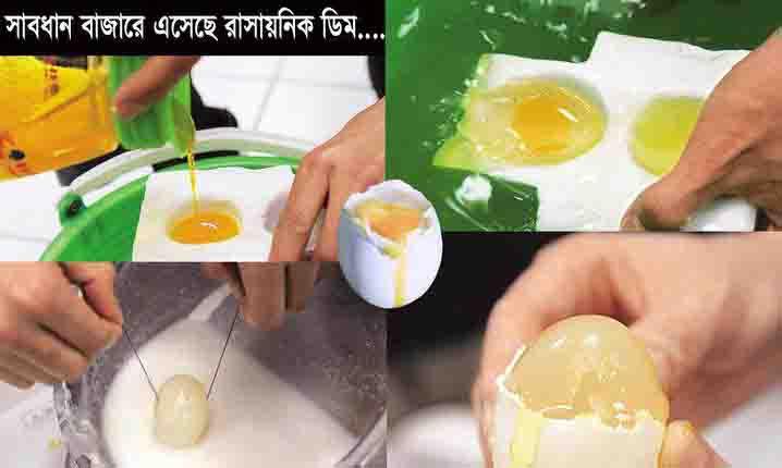 Fols Egg