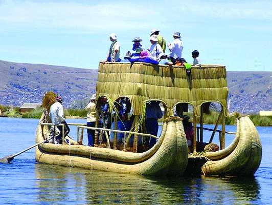 Sea grass boat