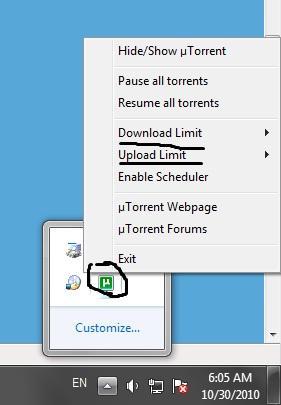 torrent6