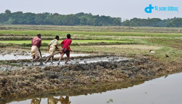 A horrible image of rural Bengal