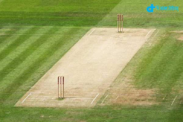 India's kind of pitch grounds