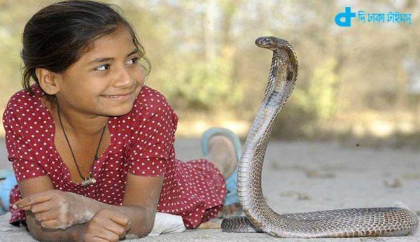Cobra snake in love with a girl