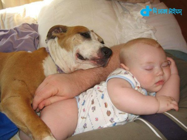 Children and dog relationship-5