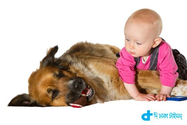 Children and dog relationship