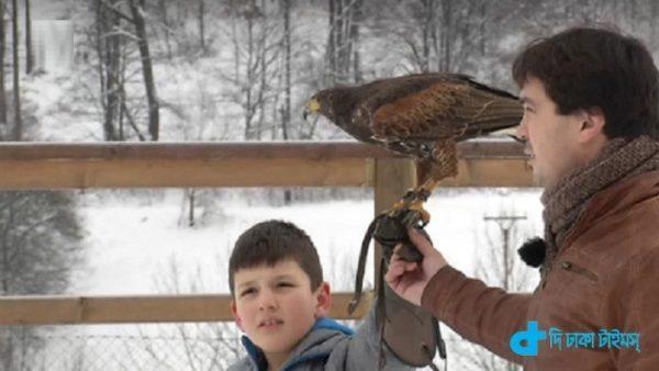 Compulsory school keeping a hawk