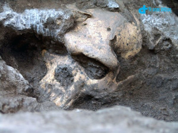 The first murder occurred in the 4 lakh 30 thousand years ago