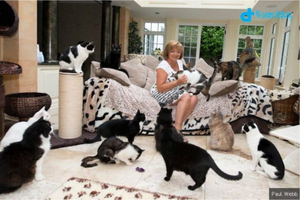 A woman living in Britain with over 122 cats