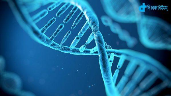 DNA & digital information