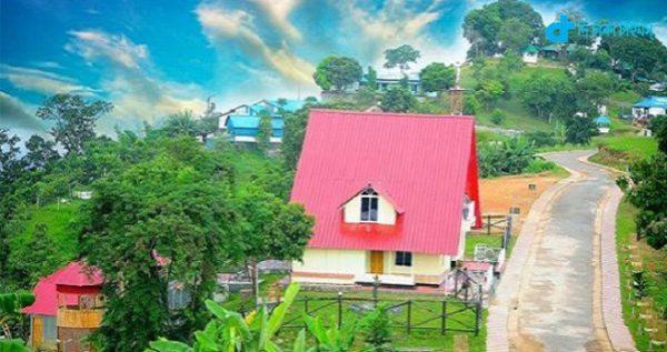 Darjeeling & Baghaichori sajek bhyali