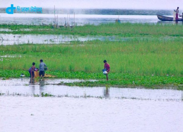 Rainy and children Fishing