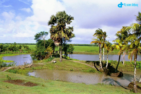 Our village and its nature
