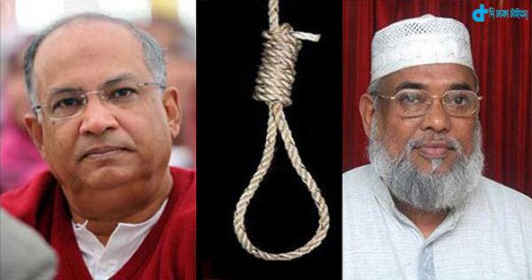 SQ-Mujahid execution