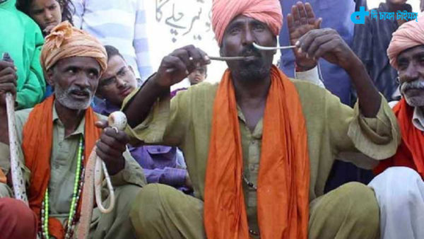 Iqbal's story of a snake charmer playing