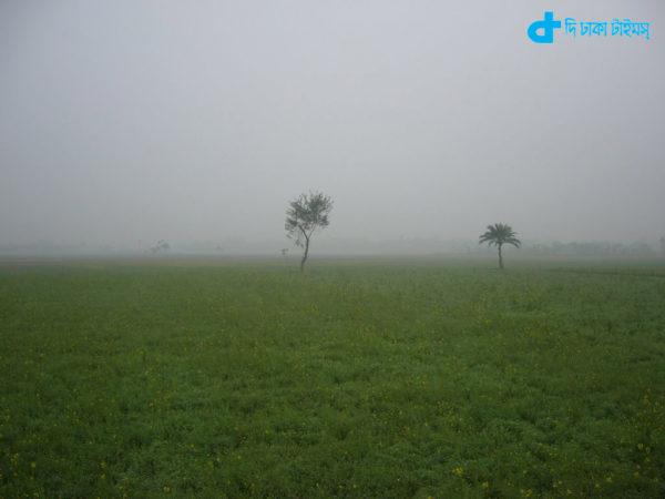 Winter morning in rural Bangladesh
