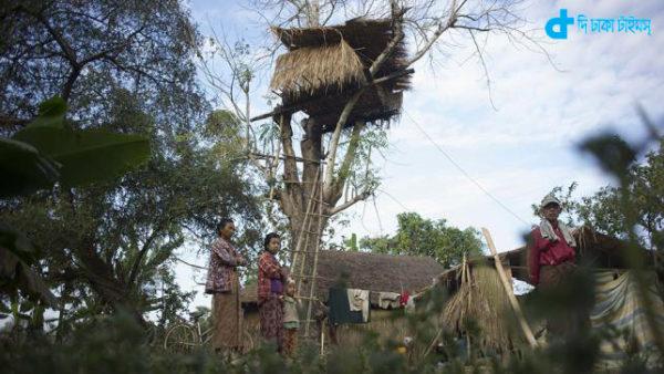 Wild elephant in fear tree