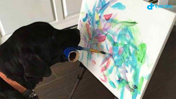story of a dog to be a painter