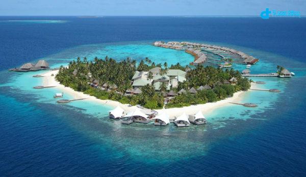A darling of Indian Ocean island