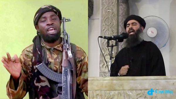 Boko Haram ISO relationship