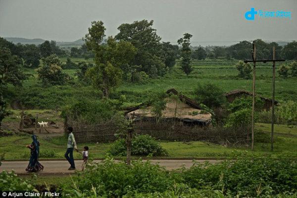 Suicides village strange story