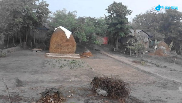 Bengal village of thatched-turn