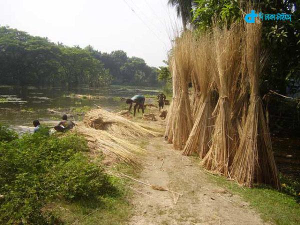 Gram-Bangla