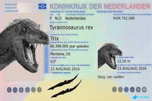 T-rex passport dainasora strange story