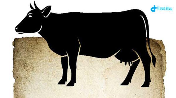 telangana-state-ban-on-cows-sacrifice