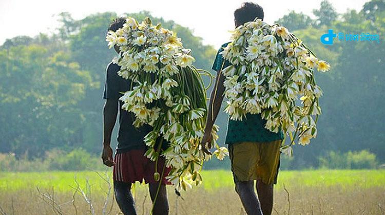 Image result for শিশু কিশোর