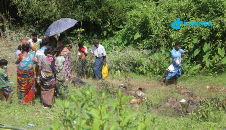 রাখাইনে গণকবর: তদন্ত শুরু করেছে মিয়ানমার সেনারা 1