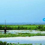 বাইক্কা বিল - মাছ ও পাখির স্থায়ী অভয়াশ্রম 3