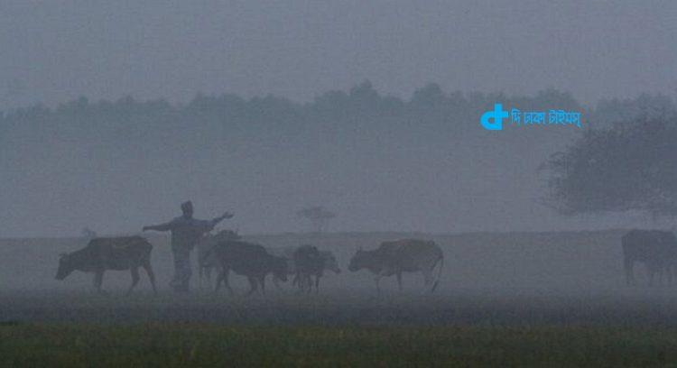 কুয়াশাচ্ছন্ন শীতের সকালে গ্রাম-বাংলা 1