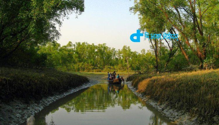 মাথাভাঙ্গা শাখা নদী ও প্রাকৃতিক সৌন্দর্য 1