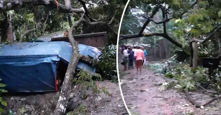 দুর্বল হয়ে 'বুলবুল' পটুয়াখালীতে ভোরে আঘাত হেনেছে 1