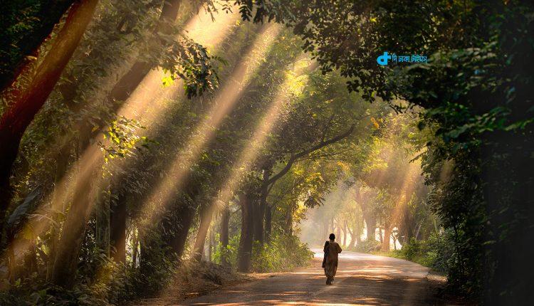 জেনে নিন বাংলাদেশের জনপ্রিয় ক্যাম্পিং স্থান সম্পর্কে [৩য় খণ্ড] 1