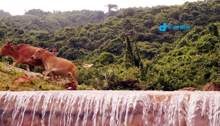 ভ্রমণ: সুনামগঞ্জের লালঘাট ঝর্ণাধারা 1