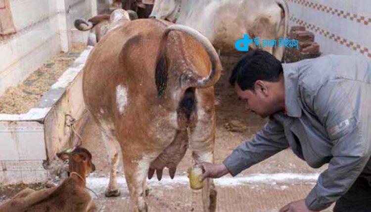 গুজবে বিশ্বাস: প্রাণ দিলো হাজারও মানুষ 1