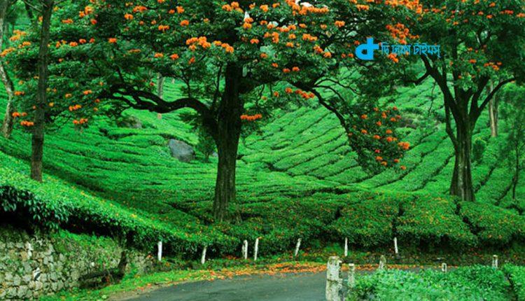 ভারতের একটি সৌন্দর্যপূর্ণ স্থান 1