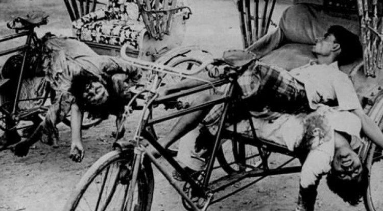 ১৯৭১ এর জন্য পাকিস্তানেরও উচিত বাংলাদেশের কাছে ক্ষমা চাওয়া 1
